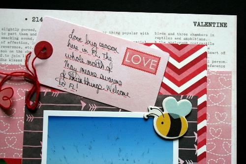 Love Bugs details2